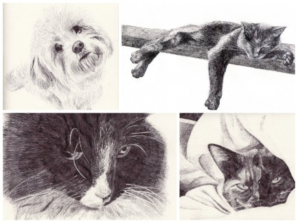 Elisa Etemad Illustration - Biro iIllustrated Animal Prints and Greetings Cards